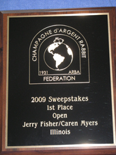 2009 sweepstakes winner